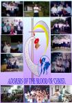 adorers of blood of christ sisters