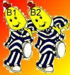 B1 AND B2